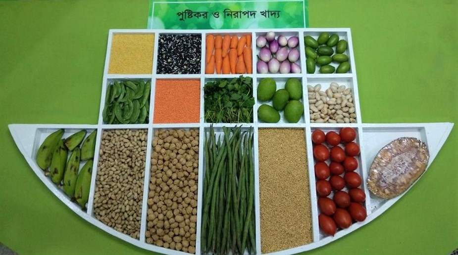 Nutrition Sensitive Agriculture in Bangladesh